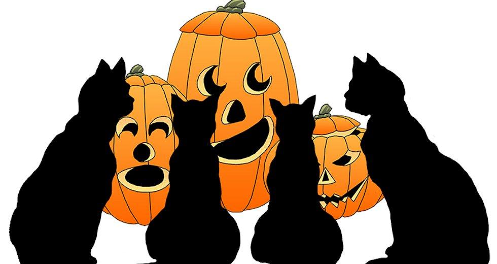 halloween-clip-art-cats-pumpkins